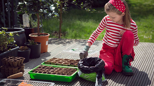 Make-Compost-Soil