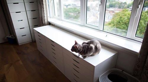 Cat-Proof-Apartment