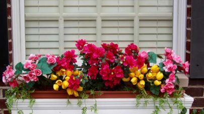 Flower Window Boxes Planter