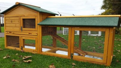 Plastic Chicken Coops