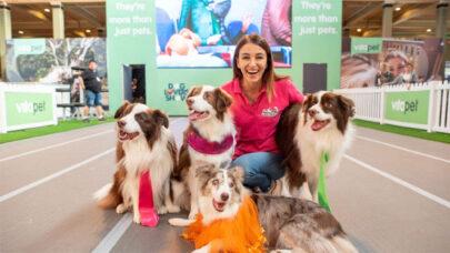 Dog-Shelter-Volunteer