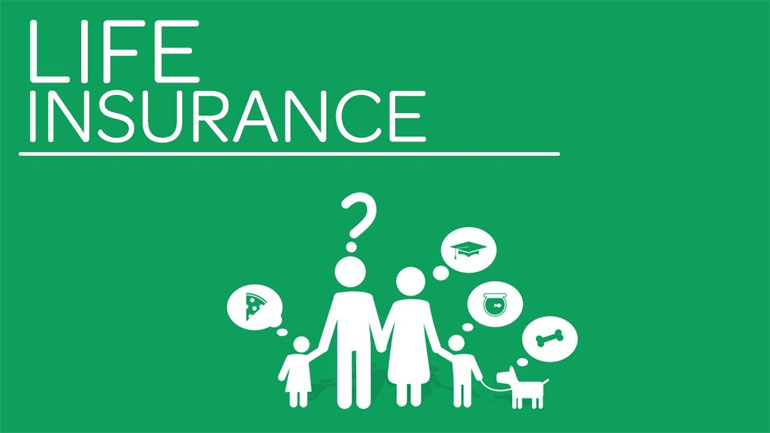 Why-Life-Insurance-Expensive