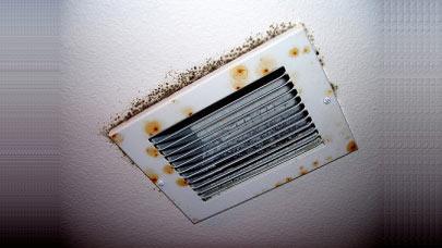 Mold-Grow-Cause-Air-Vents