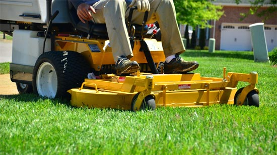 Marketing-Landscaping-Business