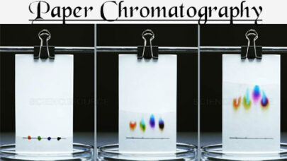 Uses Types Paper Chromatography