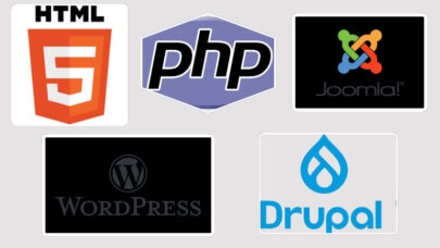 SEO Friendly Website Development Platforms