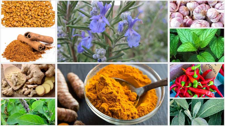 Herbs-Spices-for-Cooking-Use
