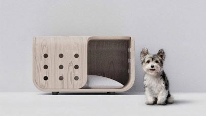 Benefits Separate Small Home for Pets